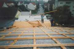 1995-10-28 Dachperspektive