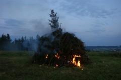 2009-06-20 Nasses Holz ist schwer entzündbar
