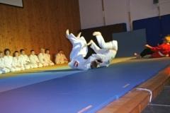 2009-12-05 Fallschule