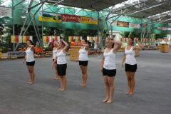 2010-07-14 Damen bei der Festgymnastik