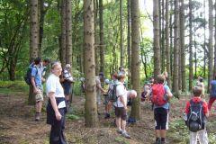 2010-08-12 Stopp im Wald