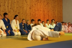 2011-12-03 Die große Judofamilie