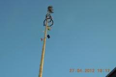 2012-04-27 Schön steht unser Maibaum da