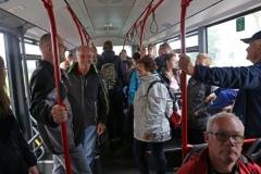 2016-06-24 Busrundfahrt auf Föhr